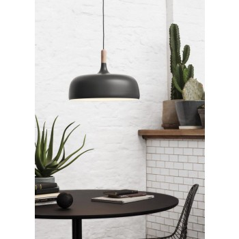 Acorn_grey_cactus-High-res_Photo_Colin-Eick_NORTHERN_LIGHTING