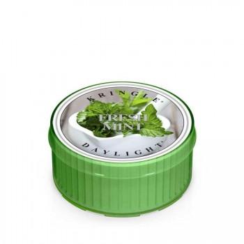 Kringle Candle – Fresh Mint – Daylight