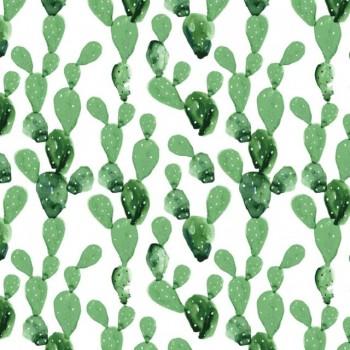 tapeta_kaktusy_dekornik